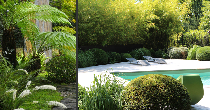 Amenagement piscine exotique - Amenagement bord de piscine ...