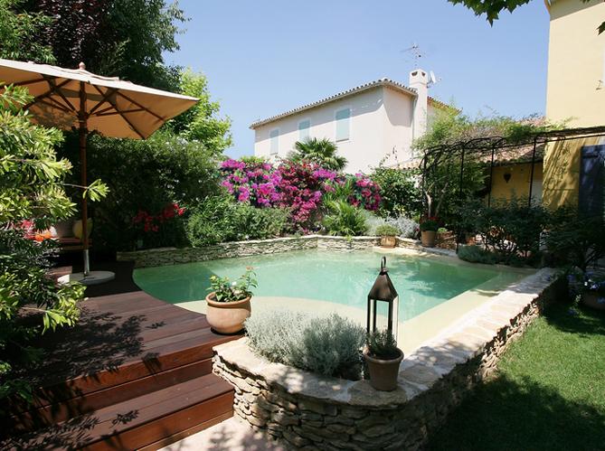 amenagement piscine plante
