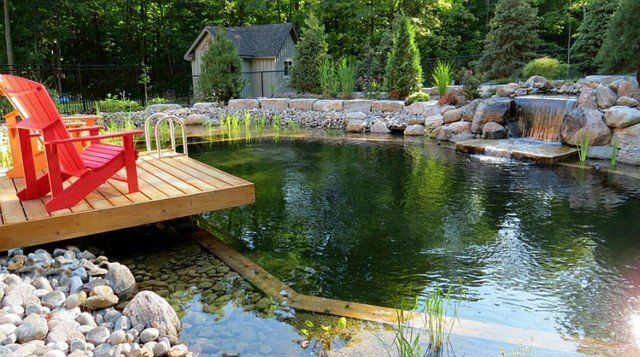 deco piscine naturelle