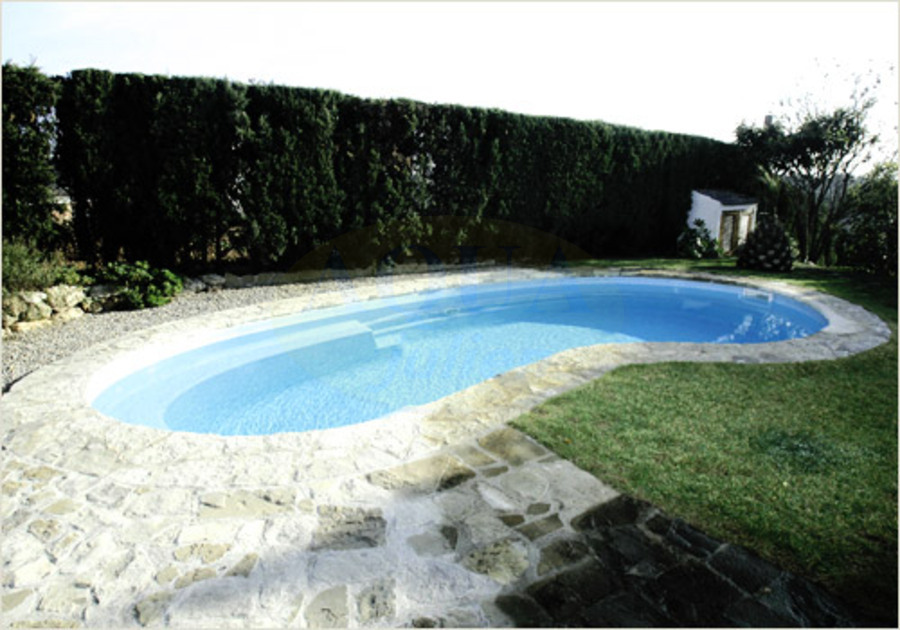 amenagement piscine haricot