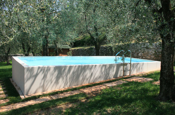 amenagement piscine laghetto