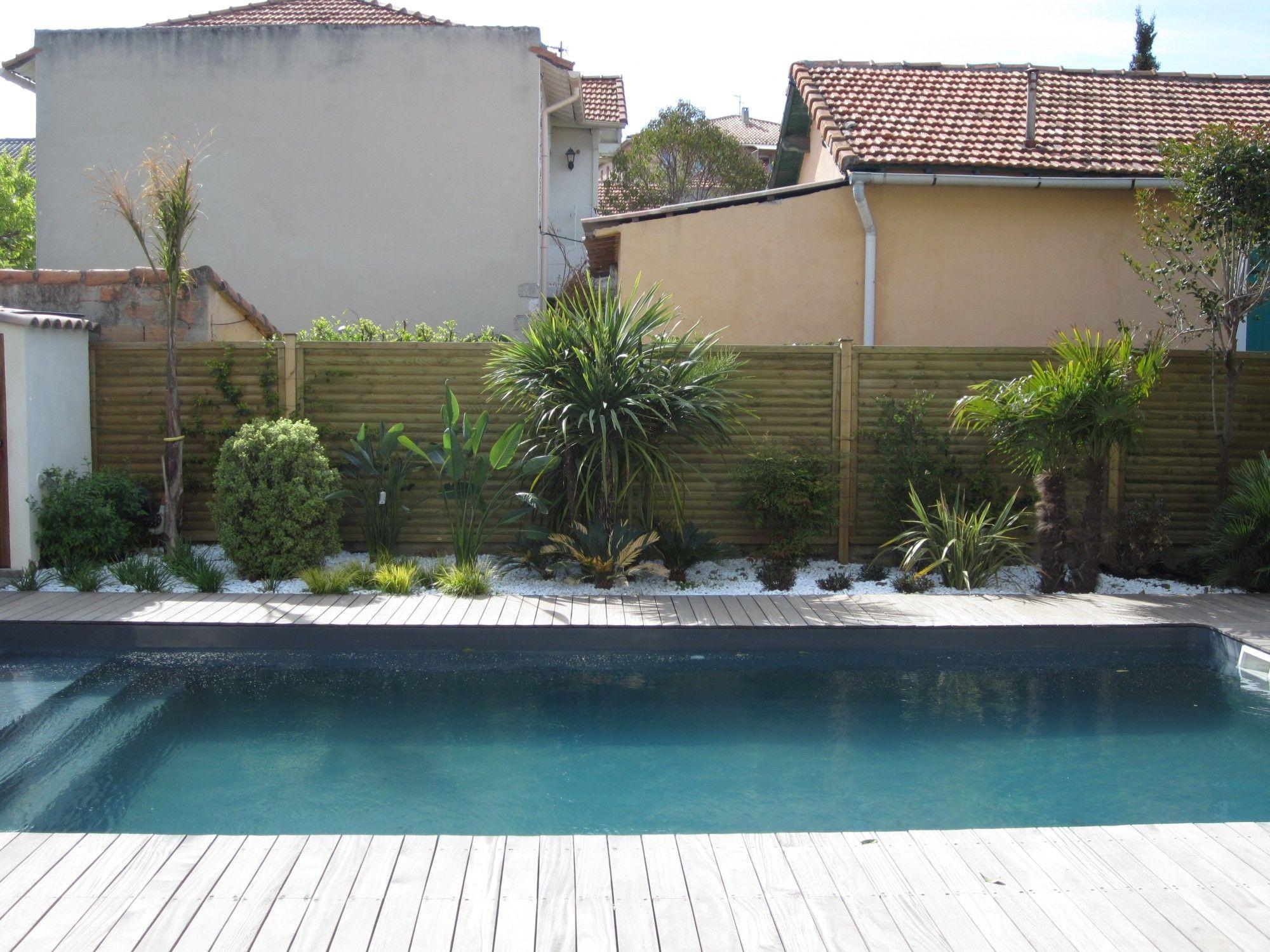 Amenagement piscine palmier - Amenagement terrasse piscine ...