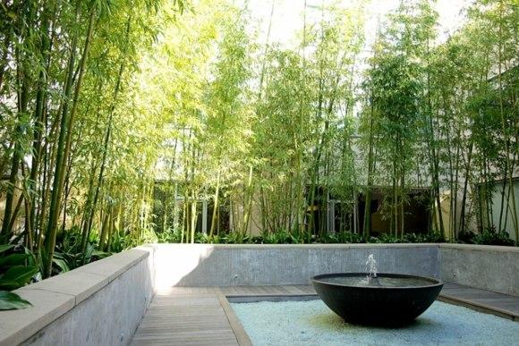 deco piscine avec bambou
