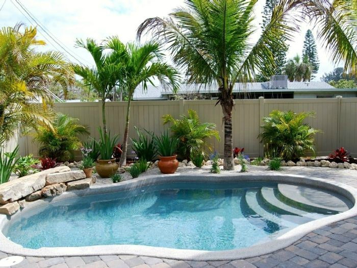 deco piscine palmier